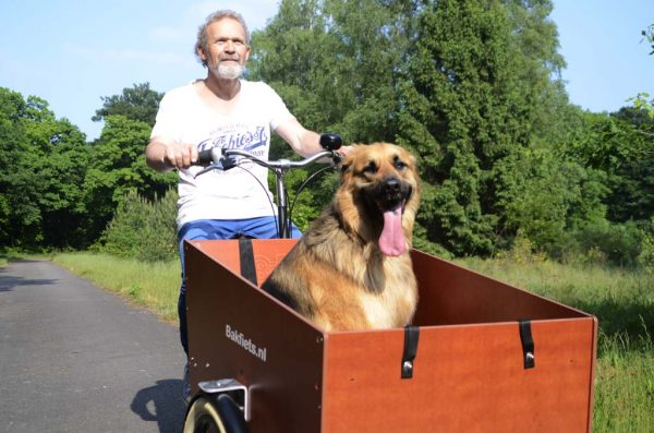 Cargo Trike Wide with Dog - Amsterdam Bicycle Company