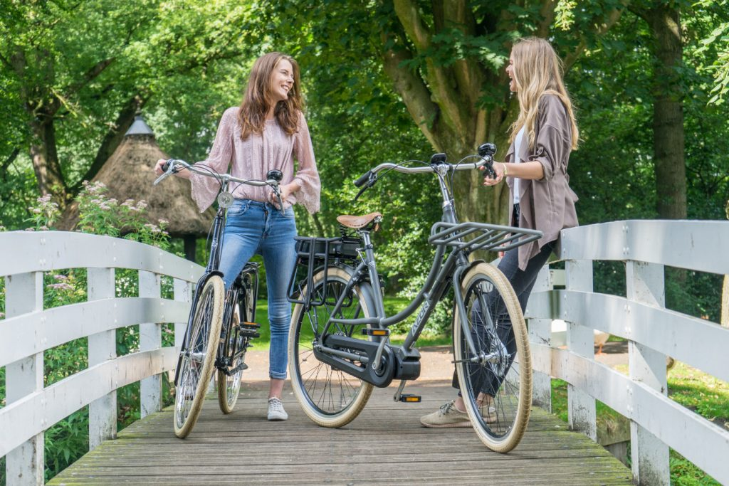Electric bikes in the park - Amsterdam Bicycle Company